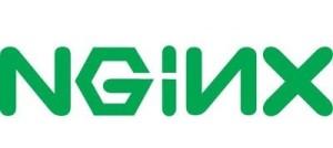 nginx-server