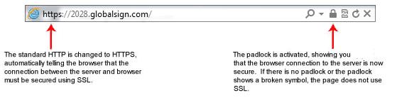 DV SSL