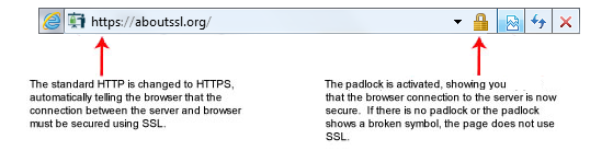Standard SSL Certificate Displays