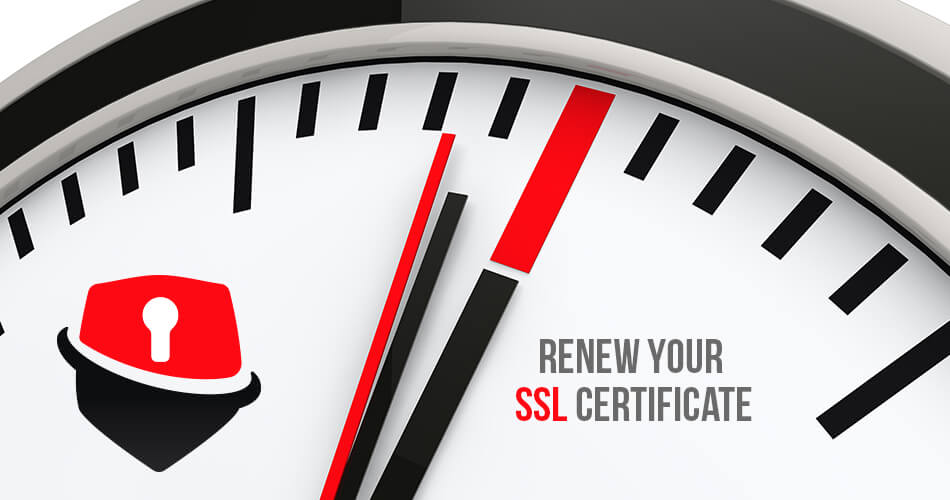 How to Renew SSL Certificate? - Everything You Need to Know