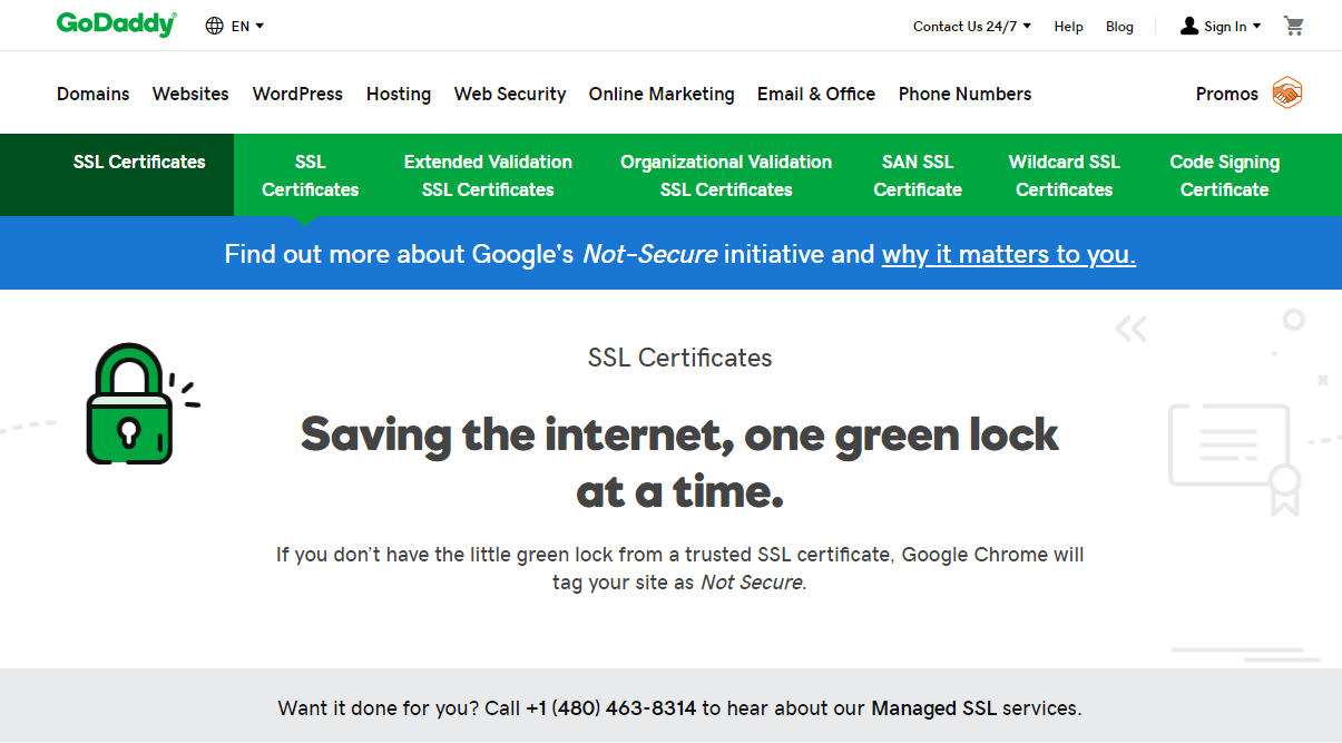 GoDaddy-SSL-Home-Page