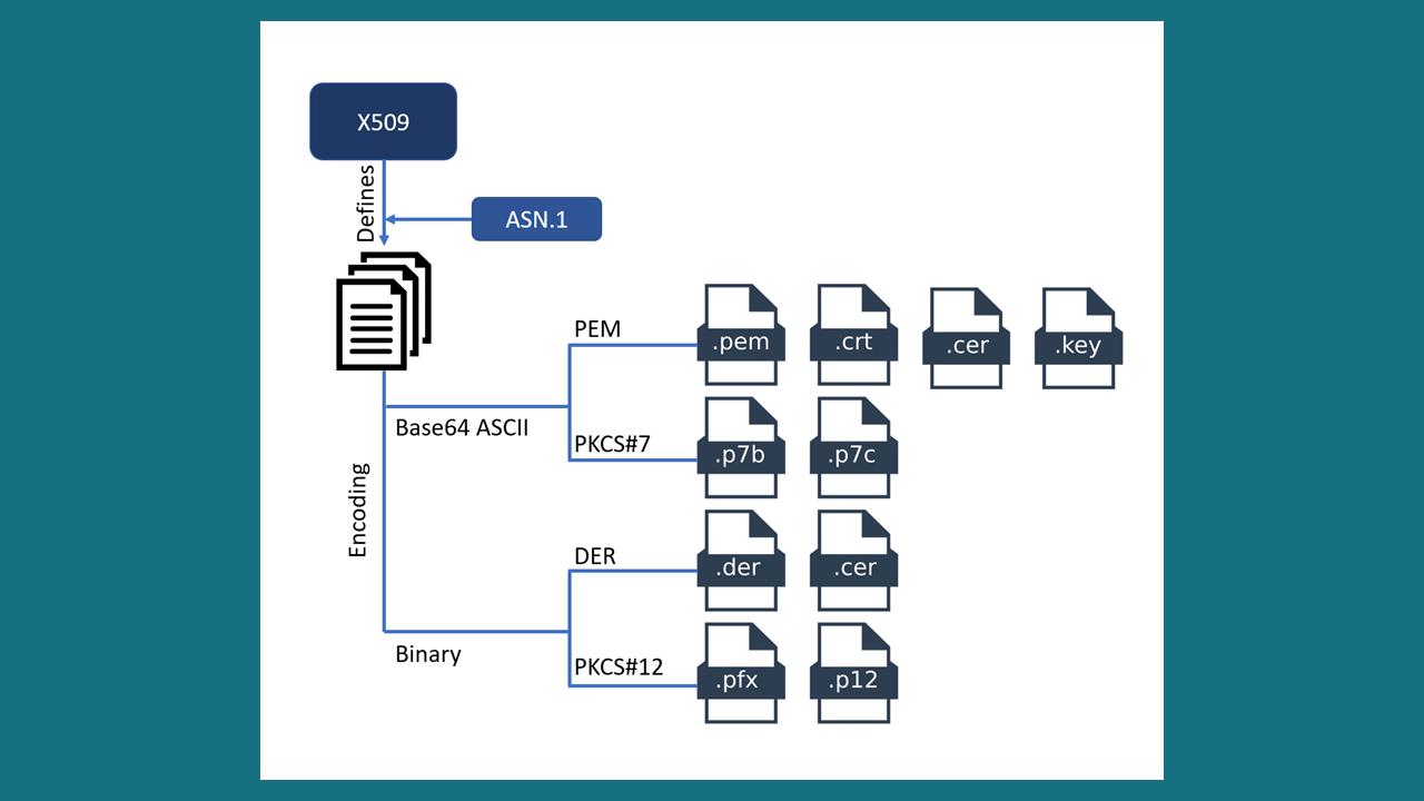 ssl-certificate-format