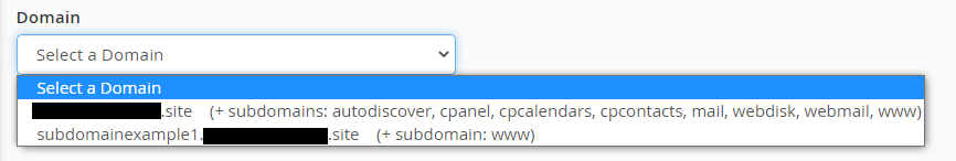 select domain from dropdown
